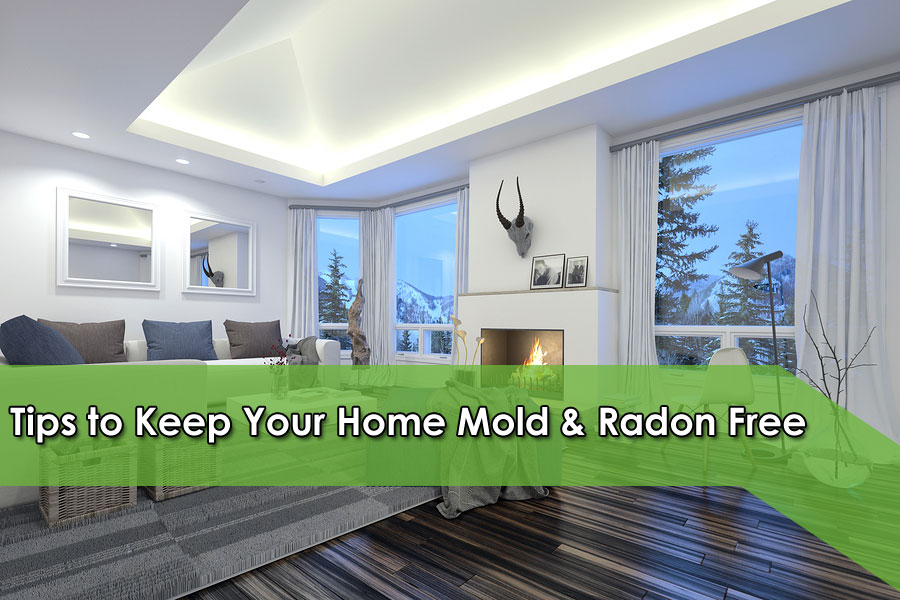 Tips to Keep Your Home Mold & Radon Free